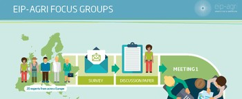 eip agri infographic focus groups 2015 en m